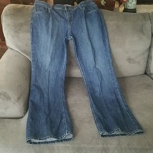 Signature Levi Strauss Low Rise Boot Cut Jeans